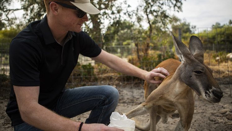 Marines conduct area cleanup for Australian wildlife